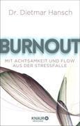 Cover-Bild zu Burnout (eBook) von Hansch, Dietmar