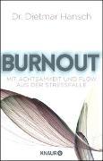 Cover-Bild zu Burnout von Hansch, Dietmar