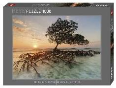 Cover-Bild zu Red Mangrove Puzzle