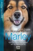 Cover-Bild zu eBook Ein Wunder namens Marley