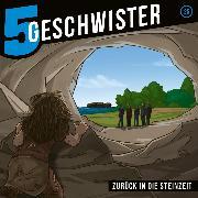 Cover-Bild zu eBook Zurück in die Steinzeit (5 Geschwister 25)