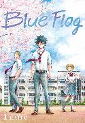 Cover-Bild zu KAITO: Blue Flag, Vol. 1
