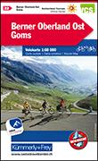 Cover-Bild zu Berner Oberland Ost - Goms Velokarte Nr. 22. 1:60'000 von Hallwag Kümmerly+Frey AG (Hrsg.)