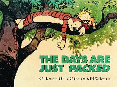 Cover-Bild zu Watterson, Bill: The Days Are Just Packed