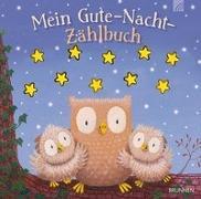 Cover-Bild zu Mein Gute-Nacht-Zählbuch von Russel, Julian (Illustr.)