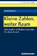 Cover-Bild zu Kleine Zahlen, weiter Raum (eBook) von Menzel, Kerstin