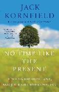 Cover-Bild zu No Time Like the Present (eBook) von Kornfield, Jack