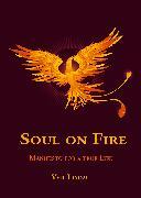 Cover-Bild zu Soul on Fire. True Life Manifesto (eBook) von Lindau, Veit