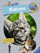 Cover-Bild zu Katzen von Schwendemann, Andrea