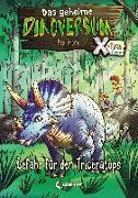 Cover-Bild zu Das geheime Dinoversum Xtra 2 - Gefahr für den Triceratops von Stone, Rex