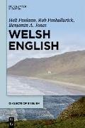 Cover-Bild zu Welsh English (eBook) von Paulasto, Heli