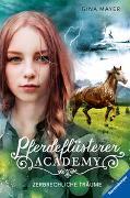 Cover-Bild zu Pferdeflüsterer-Academy, Band 5: Zerbrechliche Träume von Mayer, Gina