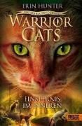 Cover-Bild zu Warrior Cats - Das gebrochene Gesetz - Finsternis im Inneren von Hunter, Erin