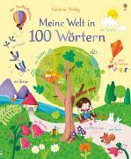 Cover-Bild zu Brooks, Felicity: Meine Welt in 100 Wörtern