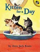 Cover-Bild zu Keats, Ezra Jack: Kitten for a Day