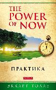 Cover-Bild zu Tolle, Eckhart: Practicing the Power of Now (eBook)