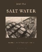 Cover-Bild zu Pla, Josep: Salt Water