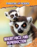Cover-Bild zu Green, Jen: Inheritance and Reproduction (eBook)