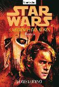 Cover-Bild zu Luceno, James: Star Wars. Labyrinth des Bösen (eBook)