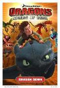 Cover-Bild zu Furman, Simon: Dragons Riders of Berk: Dragon Down