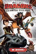 Cover-Bild zu Furman, Simon: Dragons - Die Reiter von Berk 6: Die Unterwelt (eBook)