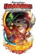 Cover-Bild zu Furman, Simon: Dragons: Defenders of Berk Volume 1