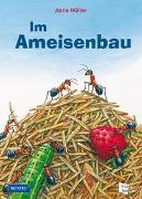 Cover-Bild zu Möller, Anne: Im Ameisenbau
