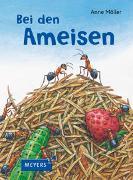 Cover-Bild zu Möller, Anne (Illustr.): Bei den Ameisen