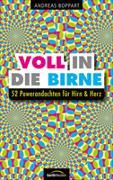 Cover-Bild zu Boppart, Andreas: Voll in die Birne
