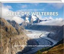 Cover-Bild zu Schmid, Raphael: Seele des Welterbes