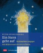 Cover-Bild zu Spangenberg, Peter: Ein Stern geht auf