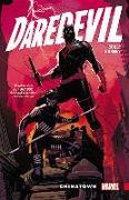Cover-Bild zu Soule, Charles: Daredevil: Back in Black Vol. 1 - Chinatown