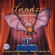 Cover-Bild zu Flechsig, Dorothea: Sandor