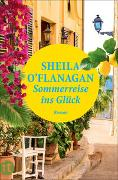 Cover-Bild zu O'Flanagan, Sheila: Sommerreise ins Glück