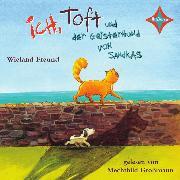 Cover-Bild zu Freund, Wieland: Ich, Toft und der Geisterhund von Sandkas (Audio Download)