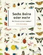 Cover-Bild zu Teckentrup, Britta: Sechs Beine oder mehr - Die Wunderwelt der Insekten und Spinnen