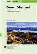Cover-Bild zu Berner Oberland. 1:50'000