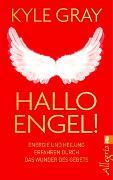 Cover-Bild zu Hallo Engel! von Gray, Kyle