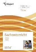 Cover-Bild zu Körper - Sinne von Boes, Waltraud