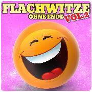 Cover-Bild zu Spassdigga, Der: Flachwitze ohne Ende, Vol. 2 (Audio Download)