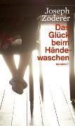 Cover-Bild zu Das Glück beim Händewaschen von Zoderer, Joseph
