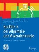 Cover-Bild zu Schwab, Robert (Hrsg.): Notfälle in der Allgemein- und Viszeralchirurgie (eBook)