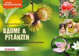 Cover-Bild zu Kleine Waldentdecker: Bäume & Pflanzen von Bestle-Körfer, Regina