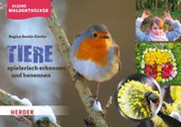 Cover-Bild zu Kleine Waldentdecker: Tiere von Bestle-Körfer, Regina