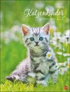 Cover-Bild zu Katzenkinder Posterkalender 2022 von Wegler, Monika