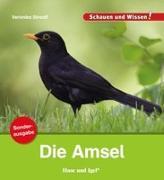 Cover-Bild zu Die Amsel / Sonderausgabe von Straaß, Veronika
