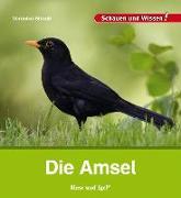 Cover-Bild zu Die Amsel von Straaß, Veronika
