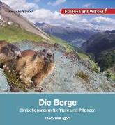 Cover-Bild zu Die Berge von Straaß, Veronika