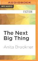 Cover-Bild zu Brookner, Anita: The Next Big Thing