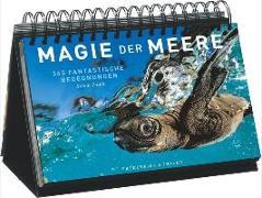 Cover-Bild zu Magie der Meere